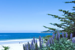 View of Carmel beach with blue sky and sea