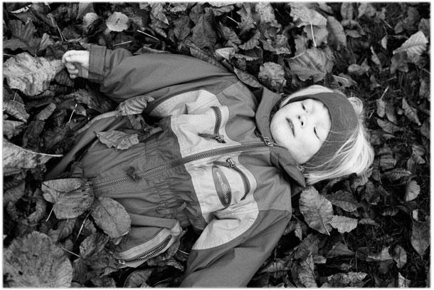 Autumn leaves and children in Denmark