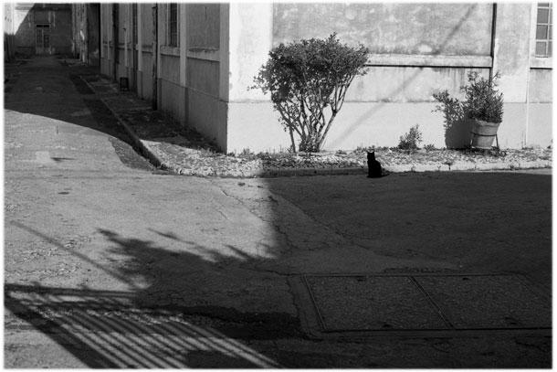 Alley in Lisbon, Portugal