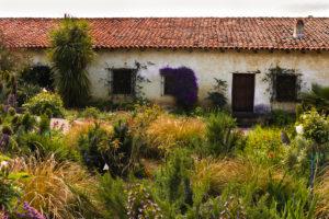 Carmel Mission Garden