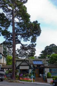 Carmel city with tall trees