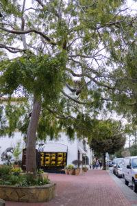 Ocean Avenue, Carmel-by-the-sea