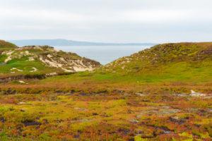 Overlooking Monterey Bay